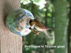 Pottery Birdhouse  bottle for wrens finches and door Hertzpottery