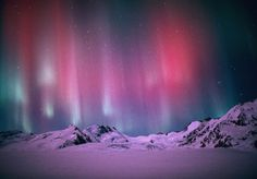 Adventures for Anyone: Viewing the Elusive Aurora Borealis or Northern Lights