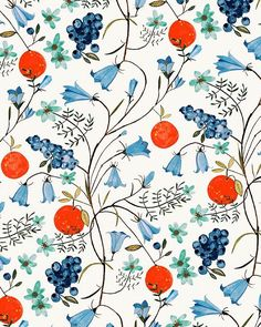 #oranges #blueberries #myrtilles