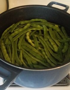 On today's daily blog post I share about blanching green beans, I  suggest  3 podcast episodes I recently enjoyed and open up about my…