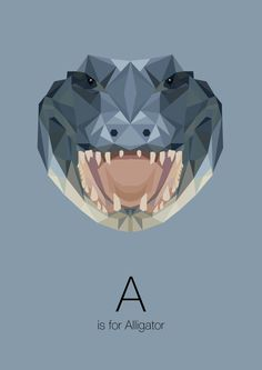 https://www.behance.net/gallery/Animal-Alphabet/12169985 a is for alligator