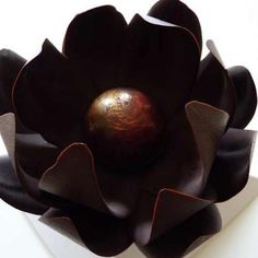 Why give a flower if you can give a chocolate flower? Oh how much I love my new found desire: Chocolate Flower by Sisko Chocolate 'Sisko C. Chocolate Delight, I Love Chocolate, Modeling Chocolate, Chocolate Shop, Chocolate Coffee, Delicious Chocolate, Chocolate Cake, Chocolate Showpiece, Chocolate Garnishes
