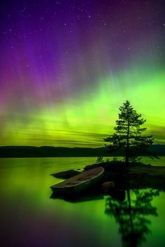 Aurora Borealis / Northern Lights