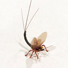 Realistic Mayfly without a hook just for fun. Swiss straw for wings. Stripped peacock quill body. Loon Outdoors #youthflytying #flytying #flyfishing #flugbindning #fluefiske #fliegenbinden #fliegenfischen #loonoutdoors #partridgehooks #orvis #orvisflytying #orvisflyfishing #harelinedubbin #wapsifly #trout #troutfishing #regalvise #dryfly #mayfly #realisticflytying www.butimag.com/...