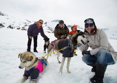 Helicopter dogsledding tours have to be one of the most doggone amazing adventures for visitors to Alaska, and this is definitely one of our favorites! Airboat Rides, Racing Events, Us Destinations, Helicopter Tour, Racing Team, Le Moulin, Amazing Adventures, How To Level Ground, Alaska