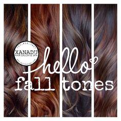 Fall hair marketing