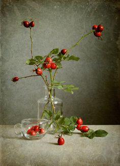 Love Surreal — By Jolanta Brigere Foto Still Life, Still Life Art, Flower Background Wallpaper, Flower Backgrounds, Ikebana, Still Life Flowers, Still Life Oil Painting, Fruit Art, Texture Photography
