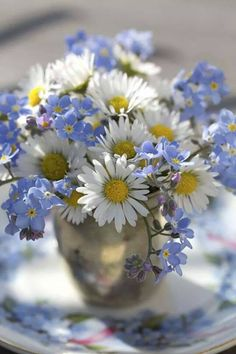 "daisies---one of the ""most friendliest flowers"""