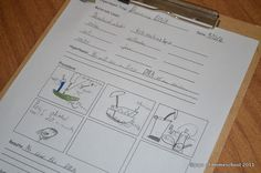 Printable Science Experiment Sheet