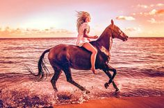www.horsealot.com, the equestrian social network for riders & horse lovers | Equestrian Photography : C.J. DeWolf.