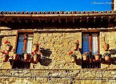 Assis/Italia 💛 Vem comigo! 👣 #epralaqueeuvouviagens #italia #italy #italy🇮🇹 #italy🇮🇹❤️ #super_italy #igersitalia #igersitaly #unlimiteditaly #italylovers #italian_trips #italian_places #instaitalia #vivo_italia #visititalia #visititaly #assisi #assisiitaly #assisi2017 #umbria #umbriagram #perugia #perugiacentro #umbriaitaly #igersumbria #igersassisi #streetphotography #windows #italiastyle_umbria #travelgram 🌍 facebook.com/epralaqueeuvou.viagens