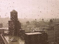 rainy day in NYC © michelleswordpressyay