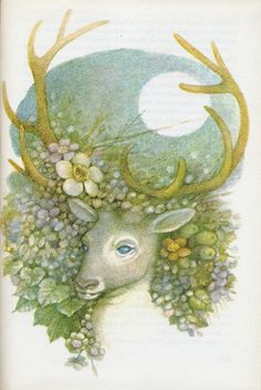 Nina Bonhardová: Fairy Tales of the Carp of Třeboň  llustrated by Dagmar Berková.