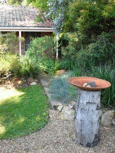 Now to find a stump and a big old dish. Garden Art, Garden Design, Landscape Design, Bush Garden, Australian Native Garden, Seaside Garden, Evergreen Garden, Native Gardens, Low Maintenance Garden