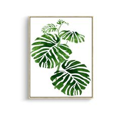 Tropical Wall Decor Canvas Wall Art Green Plam Leaves Wall Paintings for Modern Home Decor Stretched and Framed Ready to Hang 13 x 17 inch Modern Canvas Art, Modern Wall Art, Canvas Art Prints, Painting Prints, Wall Paintings, Plant Painting, Large Painting, Spray Painting, Canvas Wall Decor