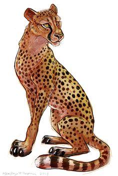 Cheetah - cheetah fan art