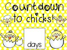 Here is a little count down poster you can use in your classroom! :)**I added 2 options for a duckling countdown as well! Chicken Eggs, Chicken Life, Hatching Chickens, Daycare Themes, Hatch Baby, Farm Unit, Baby Chicks, Future Classroom, Life Cycles