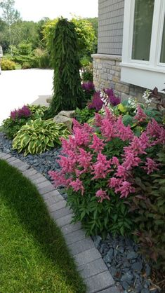 Visions astilbe, Weeping Norway Spruce, hosta, shade, texture Landscaping Jobs, Landscaping Plants, Front Yard Landscaping, Landscaping Design, Landscape Edging, Garden Edging, Weeping Norway Spruce, Small Flower Gardens, Small Space Gardening