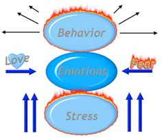 The Stress Model™ is