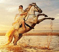Horse, woman, female beauty, Ocean view, hest, clouds, beautiful, gorgeous, golden, reflections, drops, whauw, photo