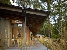 Camouflaged Forest Cabins : timber cabin
