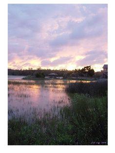 dcd Pawleys Island, SC creekside