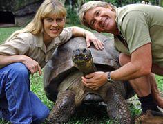 175 Jahre alt: Darwins Schildkröte feiert Geburtstag