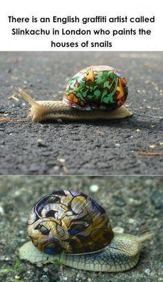 Slinkachu Snails