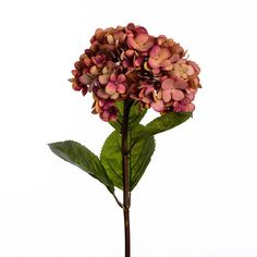 "Wyld Home Faux Russet Hydrangea: One of our best sellers, our hydrangeas work with anything and everything. Fabulous partnered with some of our other fat headed blooms like roses and peonies or combined with our foliages.   We pride ourselves in featuring the most naturalistic faux flowers and botanicals - they're seasonal, high quality and beautifully realistic. We favour natural and organic over cultivated and perfect. ""Just gathered"" rather than ""arranged"". Please keep your faux flowers…"