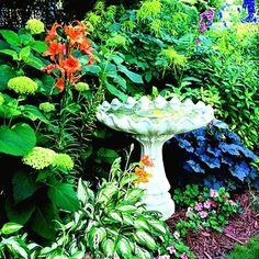 Hydrangea, hosta Layers and shades of green dotted with white and orange glow in this shady oasis that also includes lilies, impatiens, and coral bells. Green Flowers, Green Leaves, Silver Plant, Perennial Ground Cover, Concrete Bird Bath, Ornamental Grasses, Gardening For Beginners, Dream Garden, Geraniums
