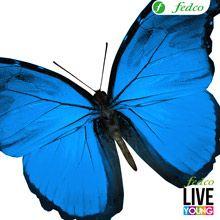 El azul es serenidad, relajación y quietud Color Azul, Live, Serenity, Blue Nails, Naturaleza, Scenery, Flowers