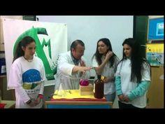 Fenómenos físicos y químicos. Juego divertido y sorprendente.