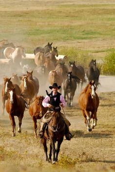 1000 Ideas About Montana Ranch On Pinterest Montana