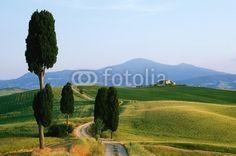 Image that sell ... Monte Amiata val d' orcia Pienza  Zypressen,Toskana Toscana © PANORAMO http://de.fotolia.com/id/9431147/partner/200519431