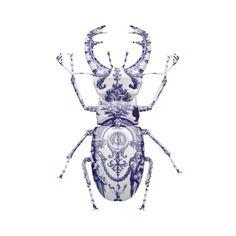 Saatchi Online Artist Magnus Gjoen; , Delft Stag Beetle