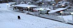 Enjoy Shimla Manali Dharamshala