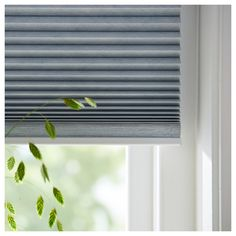 How to Shorten Cordless Blinds Home Depot . How to Shorten Cordless Blinds Home Depot . Cellular Blinds, Cellular Shades, Mini Blinds, Blinds For Windows, Window Blinds, Window Coverings, Window Treatments, Blinds Home Depot, Office Blinds
