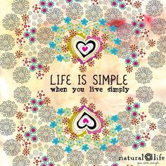 Life is good. Life is simple - Please support this project on indiegogo.com http://igg.me/at/life-issimple/x/5260970