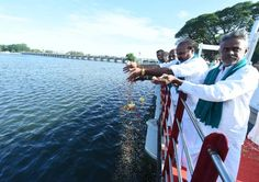 Farmers throwing paddy seeds to get better farming in Thanjavur district from Kallanai in cauveri river as Samba irrigation.