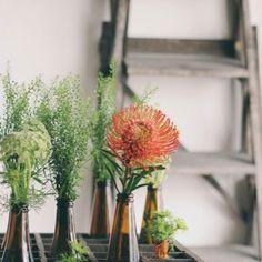 Bouteille de bière en vase - Marie Claire Idées