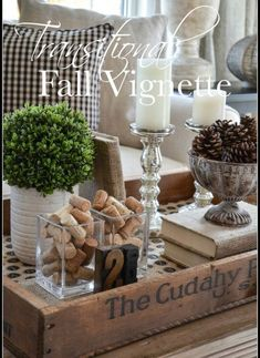 5 Eager Cool Ideas: Transitional Living Room Neutral transitional house tips. Coffee Table Vignettes, Fall Vignettes, Coffee Table Styling, Decorating Coffee Tables, Coffee Table Centerpieces, Autumn Centerpieces, Tray Styling, Transitional Living Rooms, Transitional House