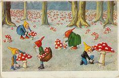 Field of Shrooms by eggchairsteve, via Flickr