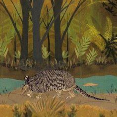 """Una Priodontes maximus sale a caminar. Cuando te cruzas a Lucrecia te dice: """"Llámame Carreta. Tatú Carreta"""". Ilustrada por @vvale.montero para nuestro Reino de #masamoranimal"""