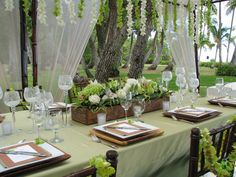 Green table cloths are super charming.