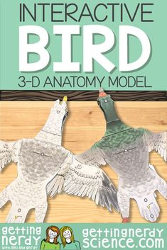 Life science and biology resources for class or homeschool. Engage students with interactive notebooks, paper dissection models, full lessons and more! Biology Lessons, Science Biology, Science Lessons, Teaching Science, Science Education, Life Science, Veterinary Studies, Veterinary Medicine, Human Body Activities