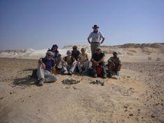 Egypt Oases-Vacations in Egypt http://www.maydoumtravel.com/egypt-desert-safari-tour-packages/4/1/21