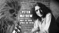 Star Wars: Chewbacca actor Peter Mayhew has passed away Peter Mayhew, Star Wars Film, A New Hope, Love Stars, Disney Marvel, Rest In Peace, Chewbacca, Passed Away, American Actors