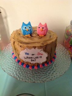 Cake at  a Gender Reveal Owl Baby Shower #owlbabyshower #genderreveal