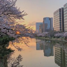 Landscaping Without Plants Aesthetic Japan, Japanese Aesthetic, City Aesthetic, Travel Aesthetic, Pale Aesthetic, Beautiful World, Beautiful Places, The Garden Of Words, Oeuvre D'art