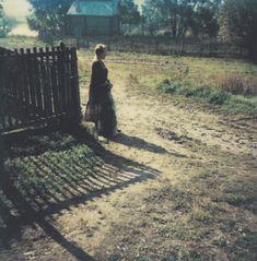"""Andrei Tarkovsky """"Myasnoe, 26 September 1981"""" - From """"Instant light"""" serie Polaroid 30*30"""